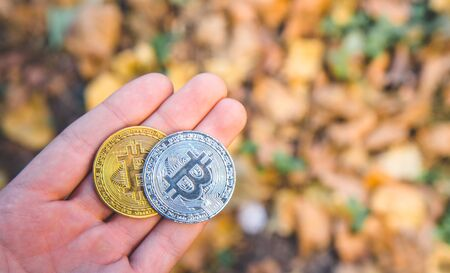 Hand holding Golden and silver bitcoin in autumn in forest , park .Modern exchange value, electronic money virtual pay , Used for investing in stocks  in autumn , brown leaves