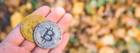 Long banner image style.Hand holding Golden and silver bitcoin in autumn in forest , park .Modern exchange value, electronic money virtual pay , Used for investing in stocks  in autumn , brown leaves
