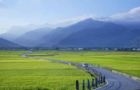 Road landscape in fields Zdjęcie Seryjne
