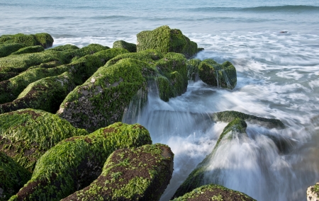 Stone trench of taiwan coast