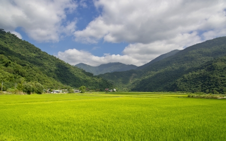 pastoral: Pastoral scene in Eastern Taiwan Stock Photo