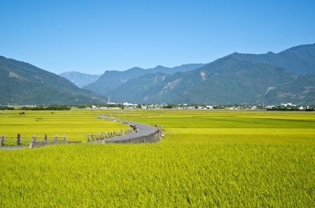 Taiwan rural scenery 스톡 콘텐츠