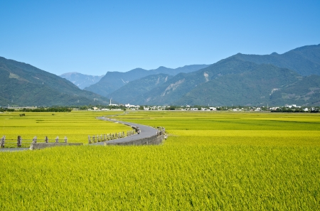 Taiwan rural scenery photo
