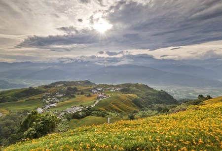 The beautiful Lily flower mountain of eastern Taiwan Stock Photo