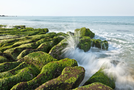 Stone Trench of Taiwan Laomei Coast