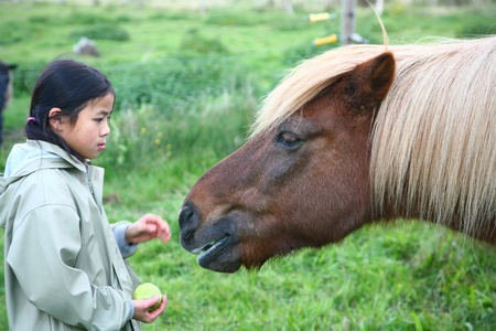 horse on a field in the summer with cute chinese girl  (focus on the horse) photo