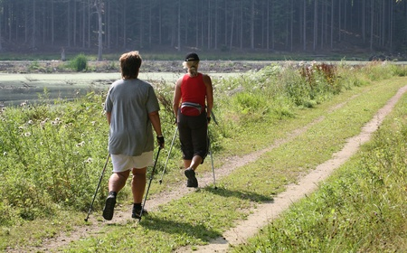 training nordic walking in a forest  in denmark Stock Photo - 9495714