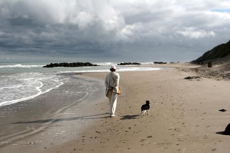 terrestrial mammals: summer in denmark:beach of loekken, people on the beach