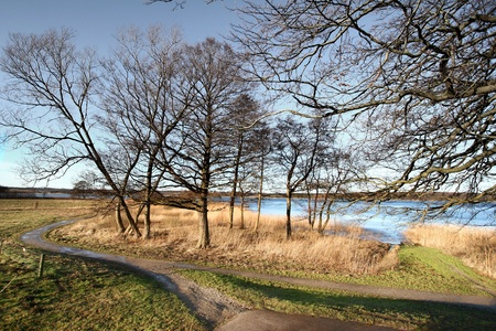 a lake in denmark in winter 