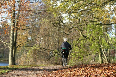 lady on a cycle in autumn in the countryside  in denmark Stock Photo - 9742324