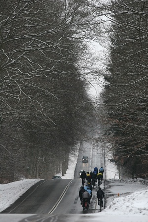 biking  on a road  in denmark in winter with frozen tree branches 