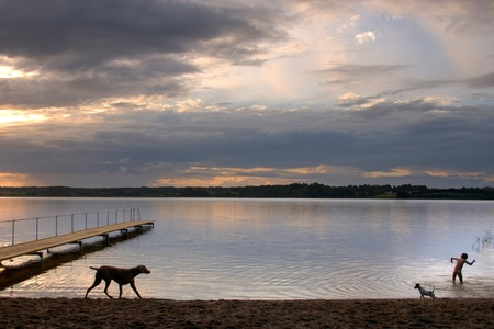 terrestrial mammals: a lake in denmark , a so called bath bridge on a danish lake  A family on the beach at the sunset   and dog passing