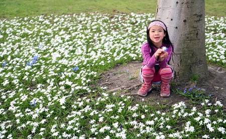 green spring landscape with child playing in the flower under a tree Stock Photo - 10070882