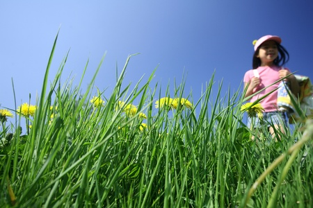 spring  in the countryside  in denmark, a green field with dandelions and child playing in backround Stock Photo - 10070881