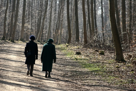 couple in a forest in winter Stock Photo - 9870624