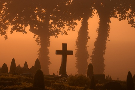 in a cemetary  in denmark an automn day  in the the early morning fog with a warm orange sun