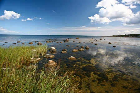 horison: Nature in south Sweden in the province of Skåne