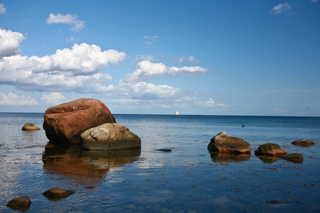 Nature in south Sweden in the province of Skåne photo