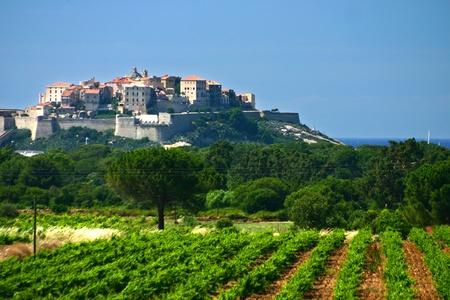 Korsische Landschaften der Stadt Calvi