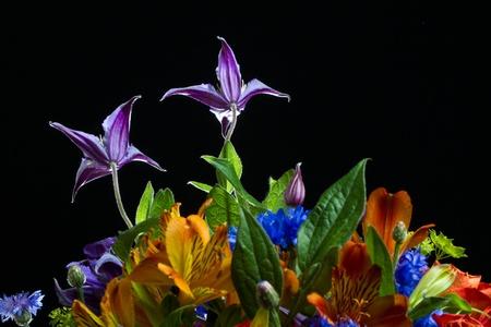 Énorme bouquet de fleurs sur fond noir