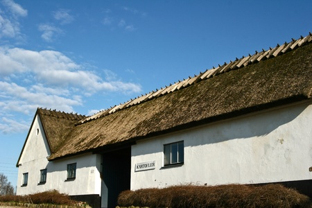 traditional building in denmark