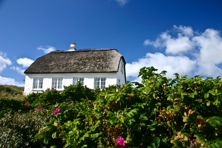 traditional building in denmark, summer house