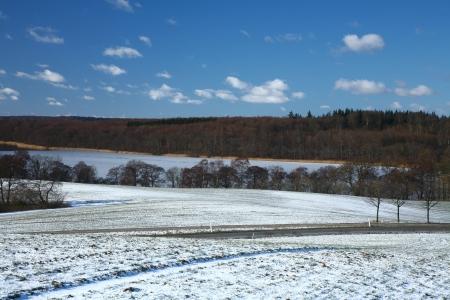 snowy field Stock Photo - 17882432
