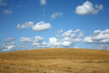 terracing: Clouds in blue sky over a dry field Stock Photo