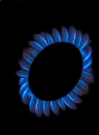 gas cooker: Cocina a gas quemador llamas azules