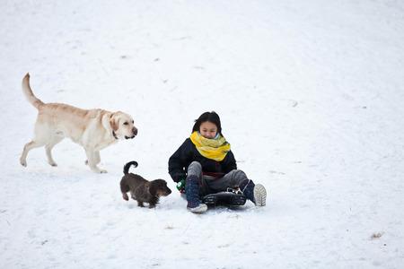 sledging people: Girl sledging in winter in Denmark