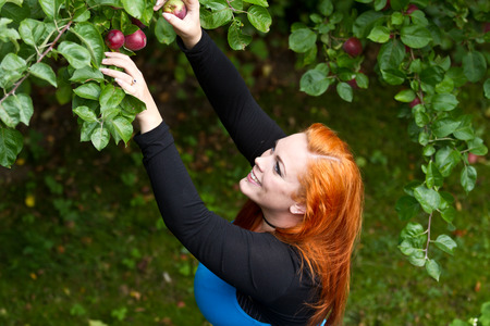 Red hair girl in pin-up style picking an apple Stock Photo