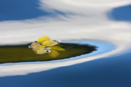 reflexion: Reflexión en un lago en Dinamarca con color azul