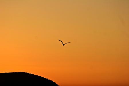 mediteranean: Sunset in Greece  Peloponese Stock Photo