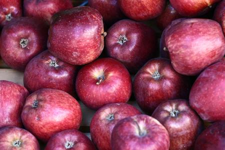mediteranean: Scenes from  Peloponese in greece in the summer, Fruit on market