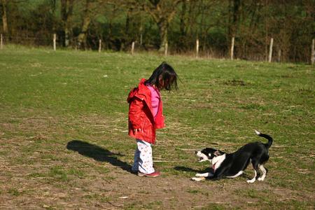 Enfant et le chien: fille avec son animal de compagnie préféré