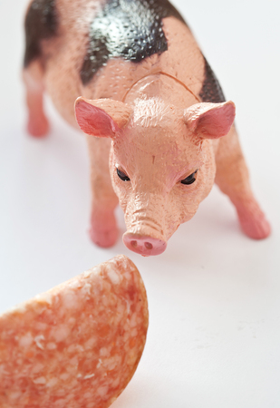 Miniature plastic Pig with a slice of saussage shot on white background