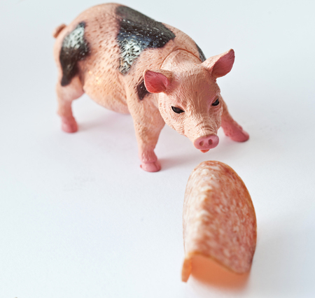 Miniature plastic Pig with a slice of sausage shot on white background