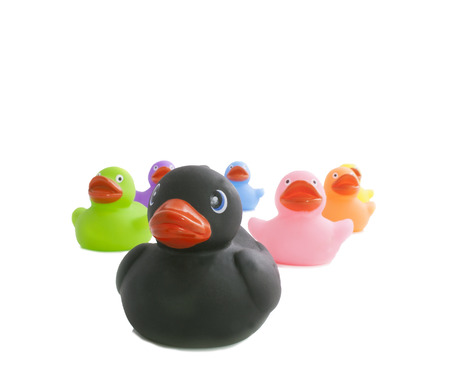 rubbery: Black and colourfull ducks isolated on a white background Stock Photo