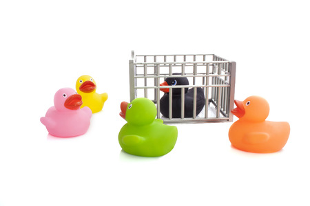 Rubber ducks whit black thief isolated over white