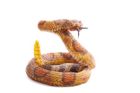 serpiente de cascabel: Juguete serpiente aislado en un fondo blanco