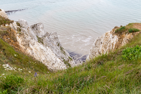 top seven: View of a chalk cliff face with grass and wild flowers at the top and a small beach area at the bottom.