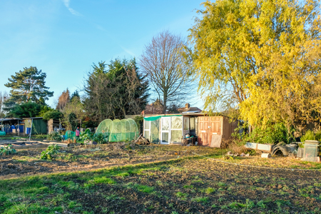 allotment stock photos. royalty free allotment images