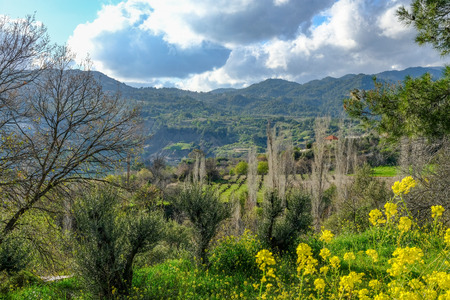 Troodos mountain , a view of the valley on the way up.   Taken in spring on a bright sunny day. Stock Photo