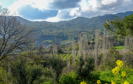 Troodos Mountain, Cyprus and the cultivated valley, with vines in Spring.