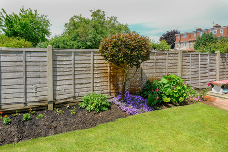 Flower bed in the back-garden with a fence behind the plants.  Taken in early summer with grass in the foreground. Stock Photo