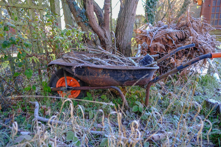 Old rusty wheelbarrow with twigs and sticks and taken on a winters morning with heavy frost. Stock fotó