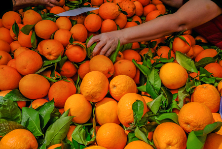 Oranges on sale on a market stall, with an arm and hand reaching in to pick a choice orange. Big selection of oranges coloured in deep orange. Stock fotó
