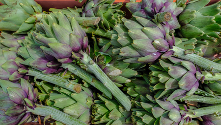 Closeup shot of artichokes on sale at farmers market. Beautiful fresh vegetables.