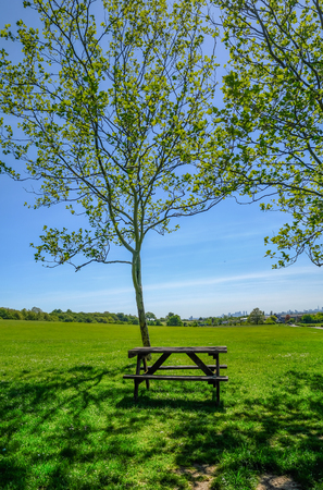 Single empty wooden picnic table set beside a tree on grass looking towards the view of London. Table sits in the shade and taken on a bright blue sky summer afternoon.