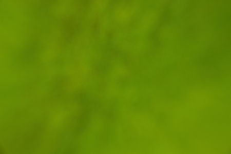 Backround Green Stock Photo - 17038349